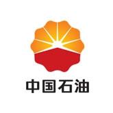 上海中国石油